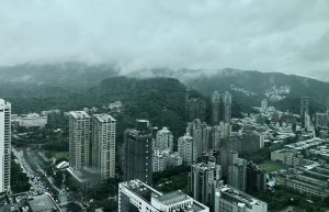 Taipei-Rainy Day in tree land